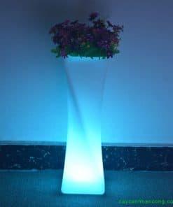 chau-trong-cay-phat-sang-LED-ban-dem-3