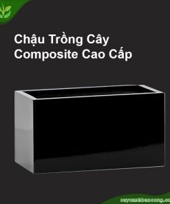 Chau-composite-hinh-chu-nhat